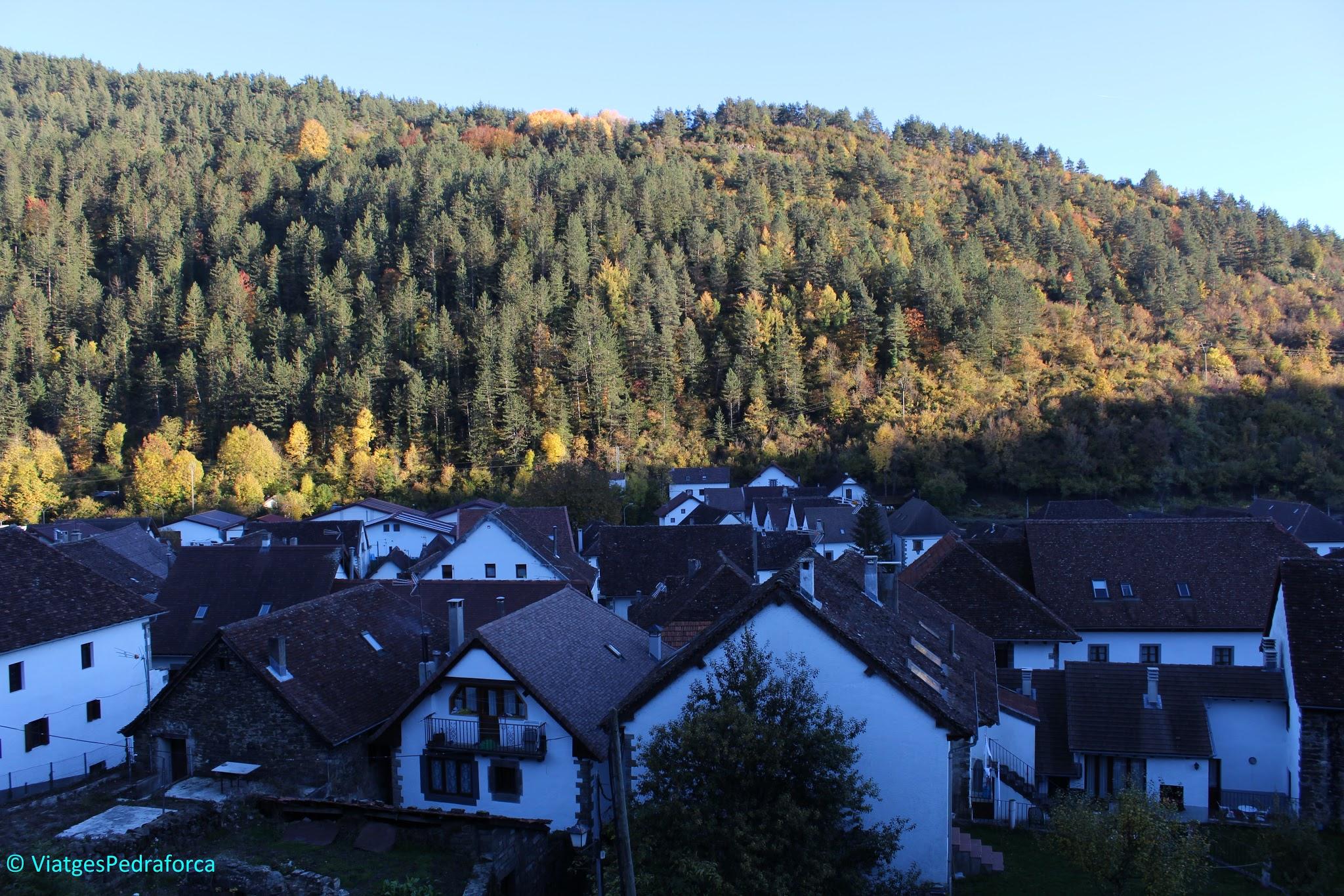 Pirineu de Navarra, colors de tardor, senderisme