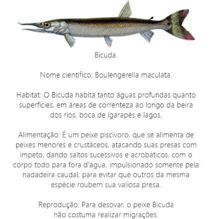 Peixe-Bicuda