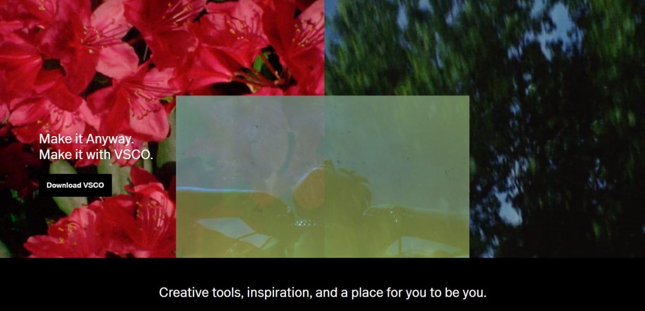 VSCO free photo editor blogging tool