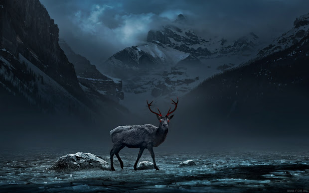 Deer Desktop Background Mountains