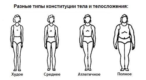 разная конституция тела и телосложение