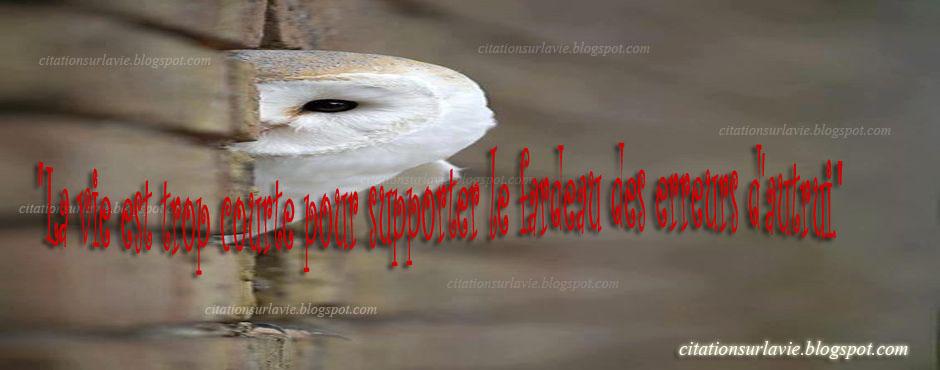 proverbe citation sur la rencontre