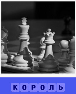 на шахматной доске стоит фигура король