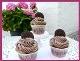 http://diebackprinzessin.blogspot.co.at/2014/08/oreo-cupcakes-nicht-ganz-so-gelungen.html