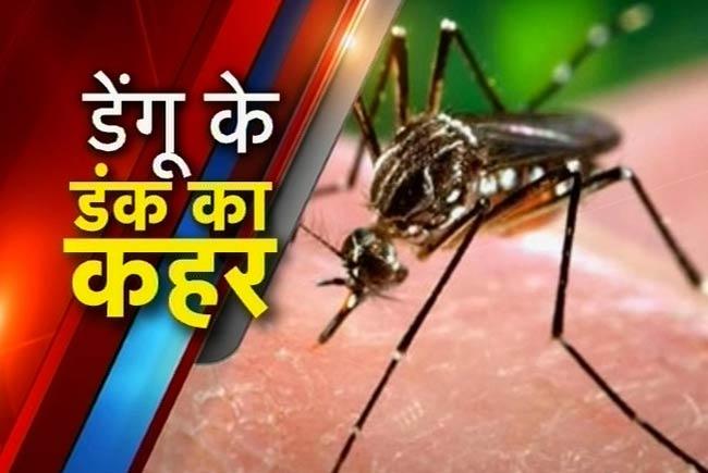 नालंदा में डेंगू ने दी दस्तक, स्वास्थ्य विभाग हुआ अलर्ट