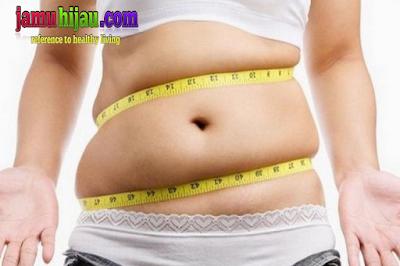 hancurkan lemak tubuh, diet sehat, life insurance