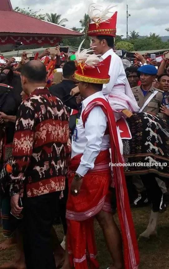 Presiden Jokowi Menunggangi Kuda Sumba
