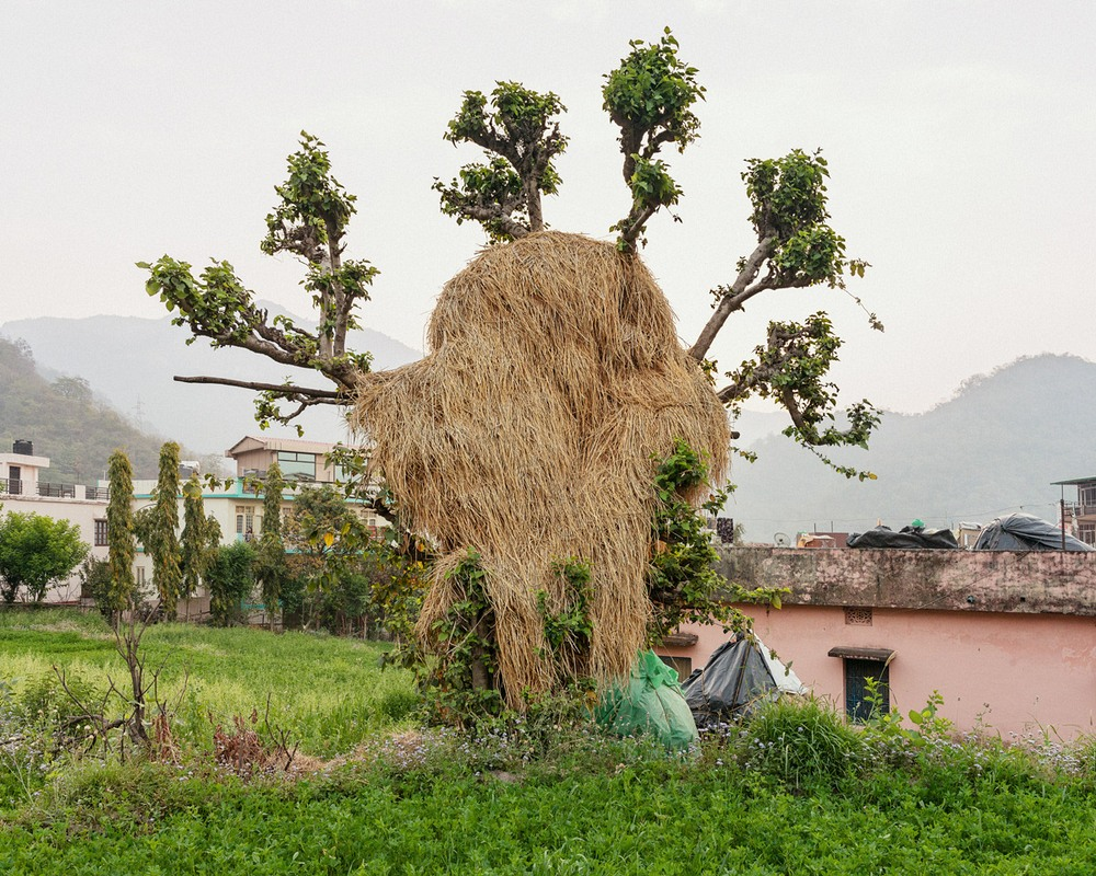 Haystacks of Rishikesh