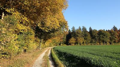 Natur in Herbststimmung