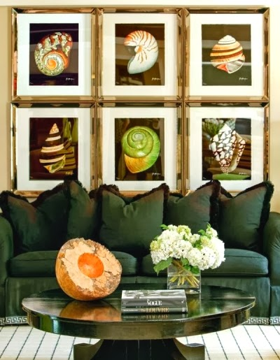 Framed Seashell Prints Gallery Wall Idea above Sofa