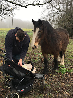 horse with baby blog country mumming