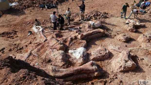 fosil dinosaurus 77 ton di argentina