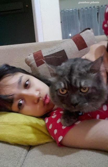Kucing milik Ayana Shahab