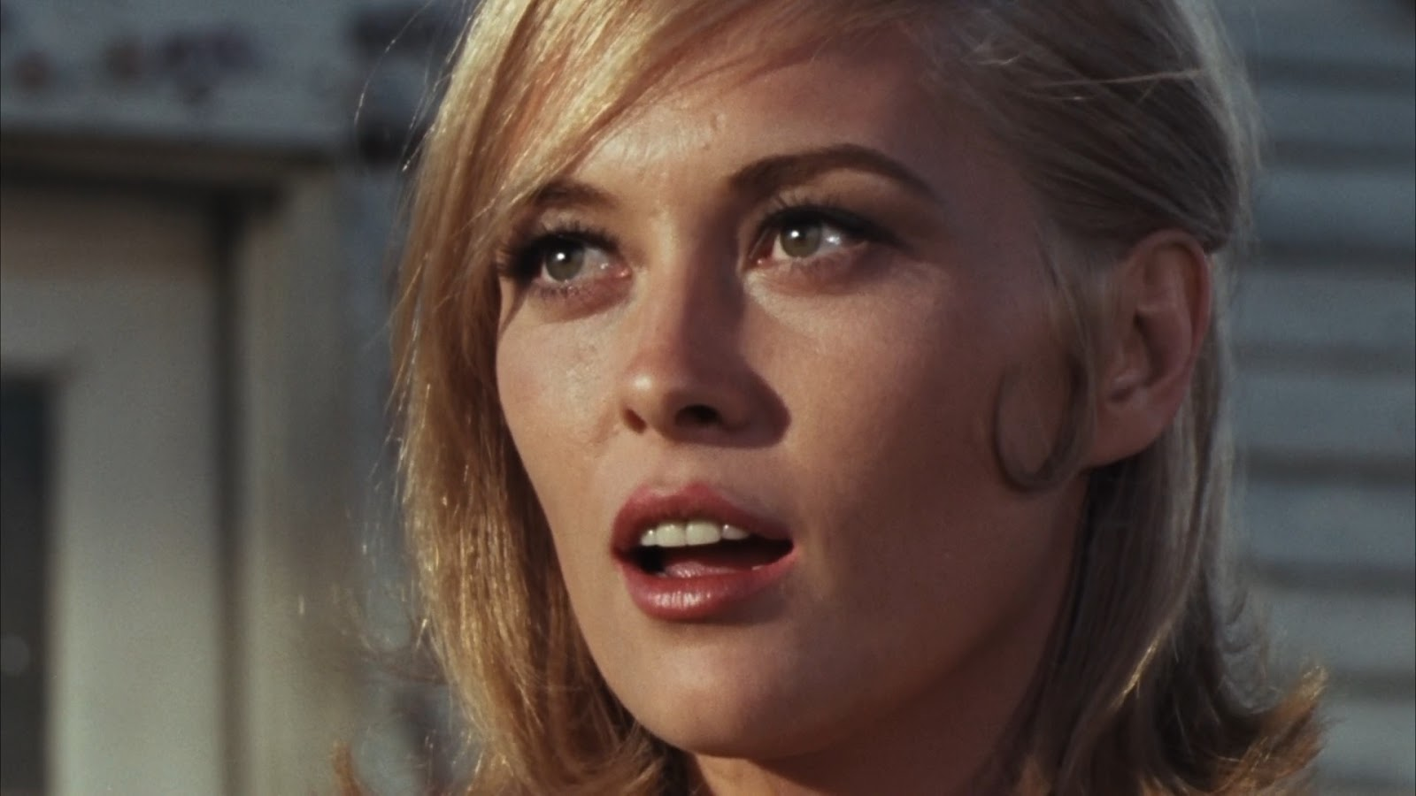 Bonnie and Clyde 1967 Dual BRRip 720 Zippy