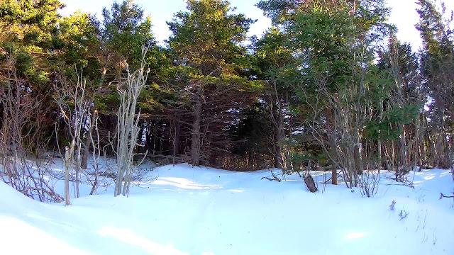 Smooth Winter Terrain White