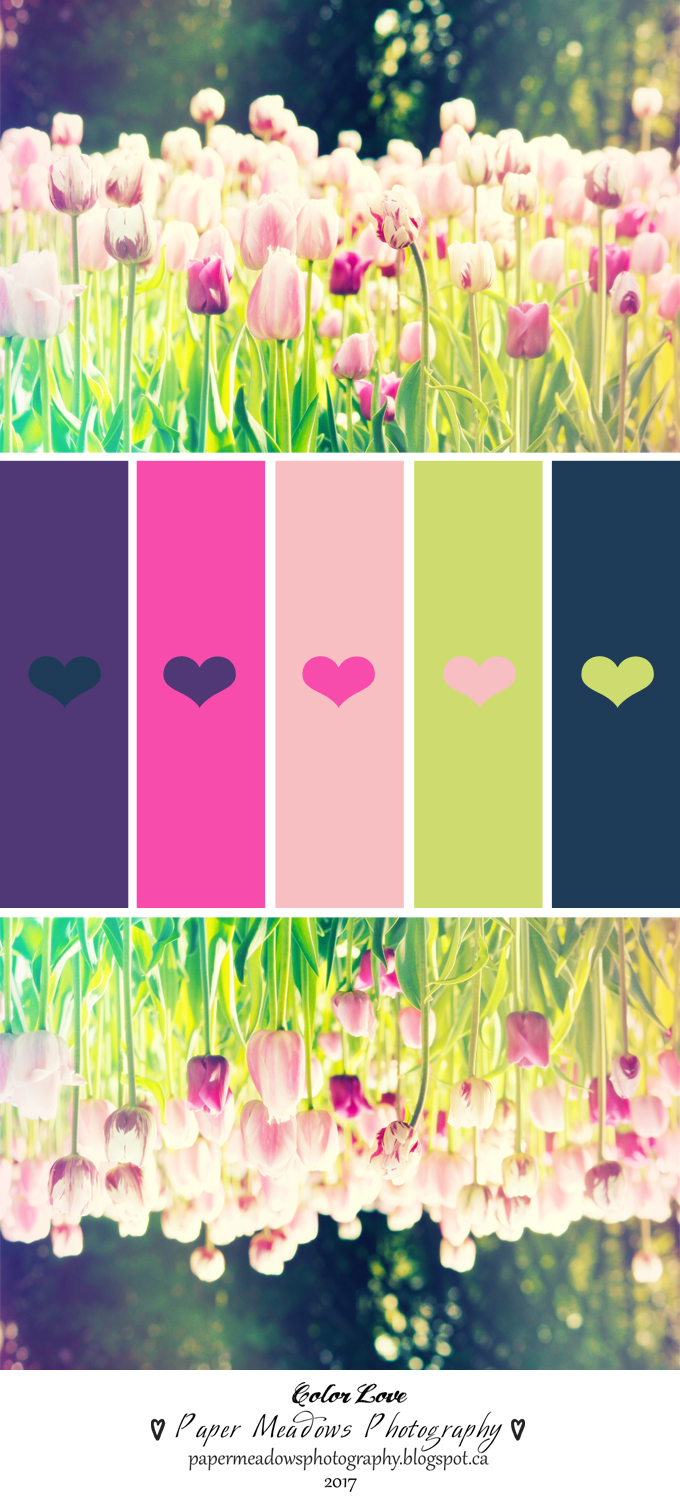 Paper Meadows Photography Blog- Free Printables-Purple Tulips-Color Palette Inspiration