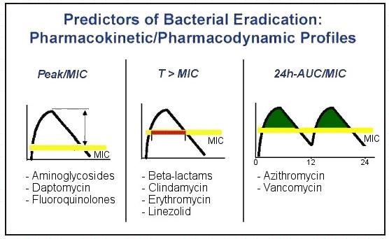 Profil Farmakokinetik dan farmakodinamik Antibiotik