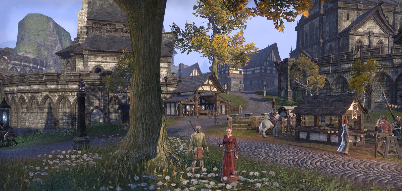 Inventory Full: The Elder Scrolls Online - Installation