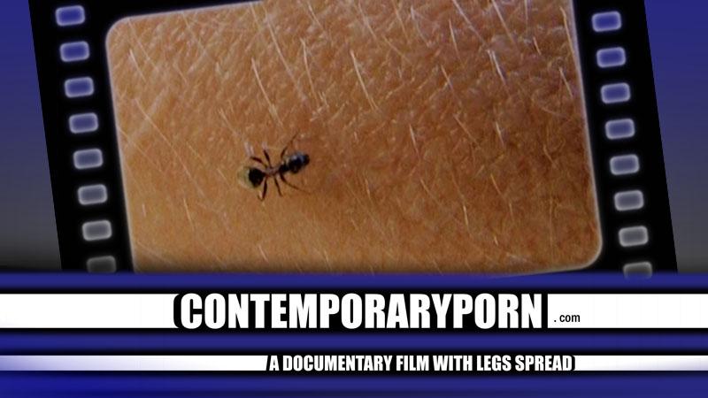 Contemporary Porn 51