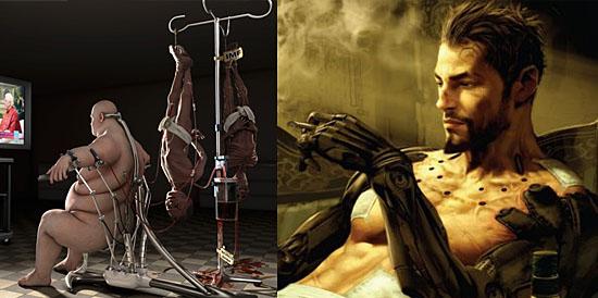 Evolução corpo humano