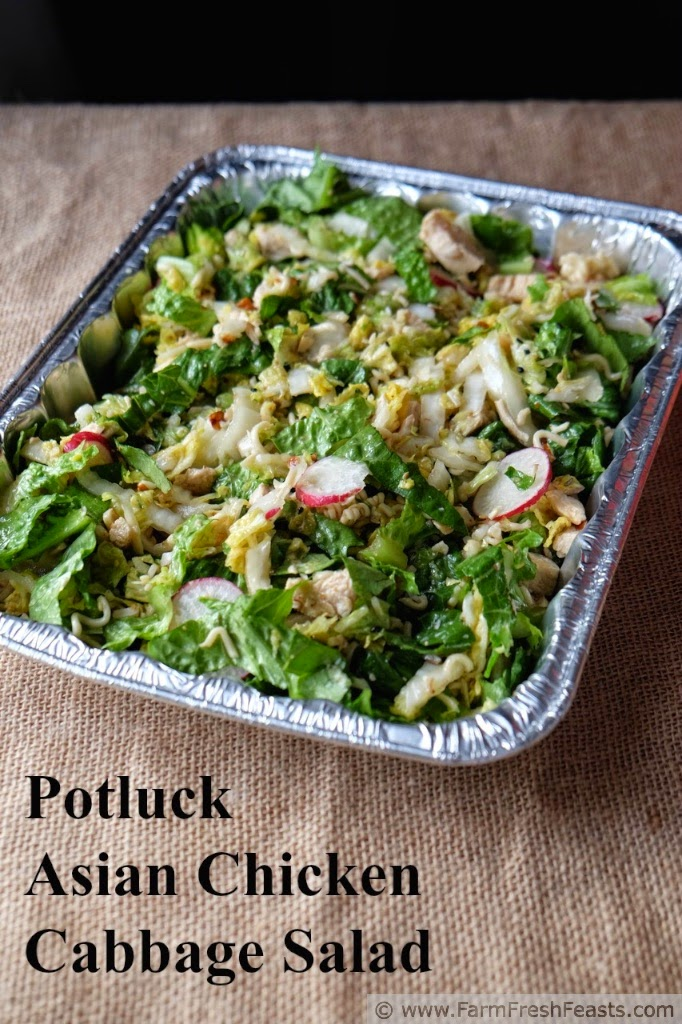 http://www.farmfreshfeasts.com/2015/03/potluck-asian-chicken-cabbage-salad.html
