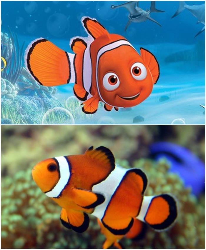 Gambar Kartun Ikan Nemo Lucu