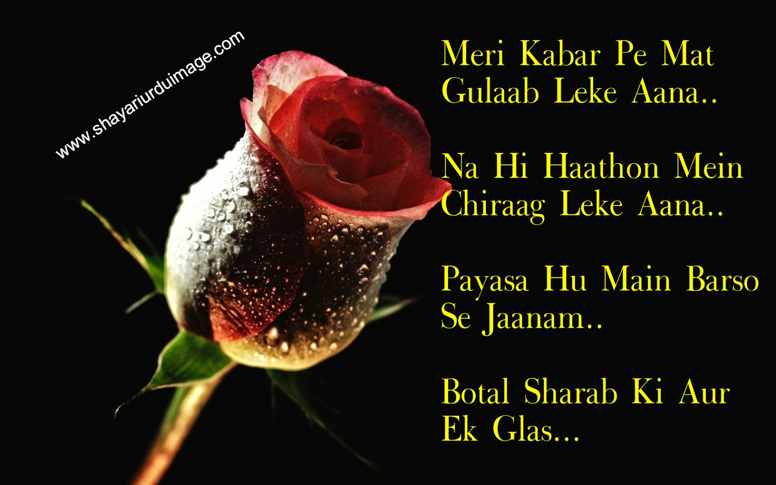 Shayari Urdu Images,urdu shayari with picture,urdu shayari wallpaper,love shayari urdu,sad love ...