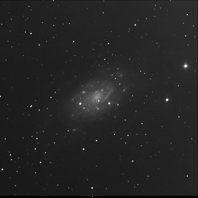 RASC Finest galaxy NGC 2403 in luminance