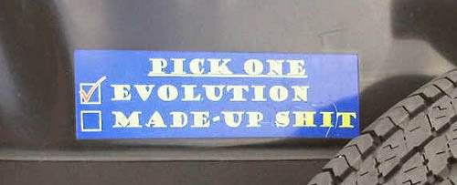 Funny Atheist Bumper Stickers - Pick one: evolution or made up sh*t