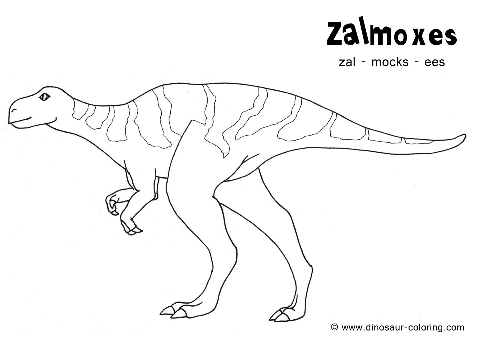 dinosaur facts and coloring pages - photo#24