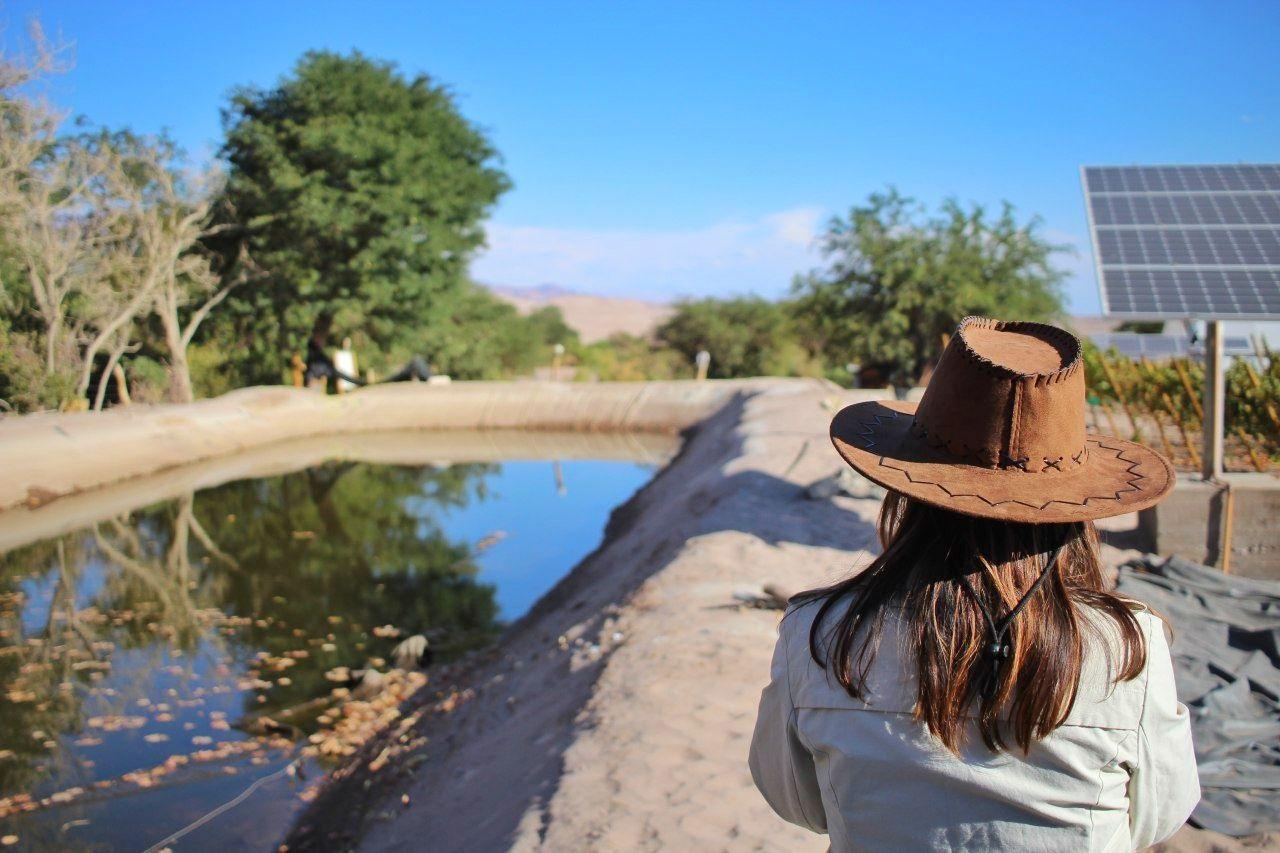 O poço de água da Vinícola Santa Romina. O água é drenada dele.