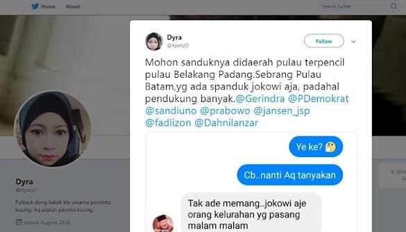 Warga Protes Spanduk Jokowi Bertebaran di Batam, Bawaslu Tegur TKD 01