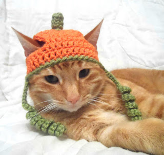 Crocheted pumpkin cat hat with tendrils, recommended by MyCatSylvia.