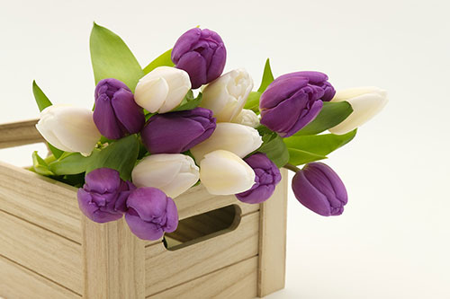 If you are in Russia, then you will notice how men buy flowers on March 6-8 (traditionally it is tulips)
