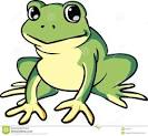 imagen de una rana