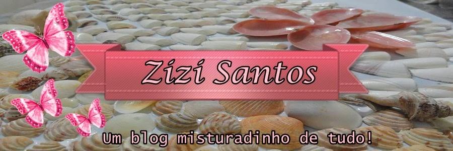 Zizi Santos
