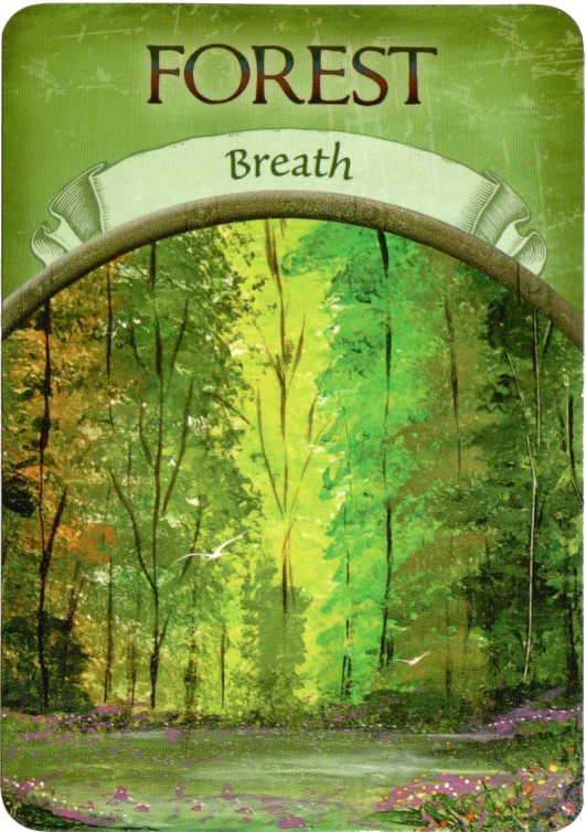 Earth Magic Oracle Steven Farmer Forest Breath