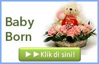 http://www.bunga24.com/p/bunga-baby-born.html
