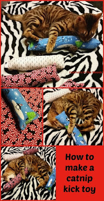 make a catnip toy