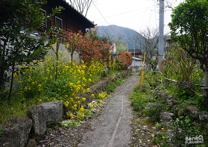 Small street in Yufuin