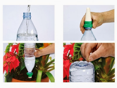 Innovative and Creative Watering Gadgets for Planters (10) 7