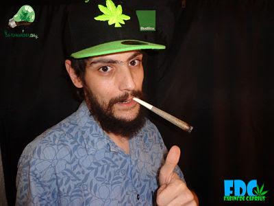 fabini cannabis