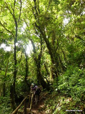 Sendero a las Cascadas Perdidas de Boquete, Panamá