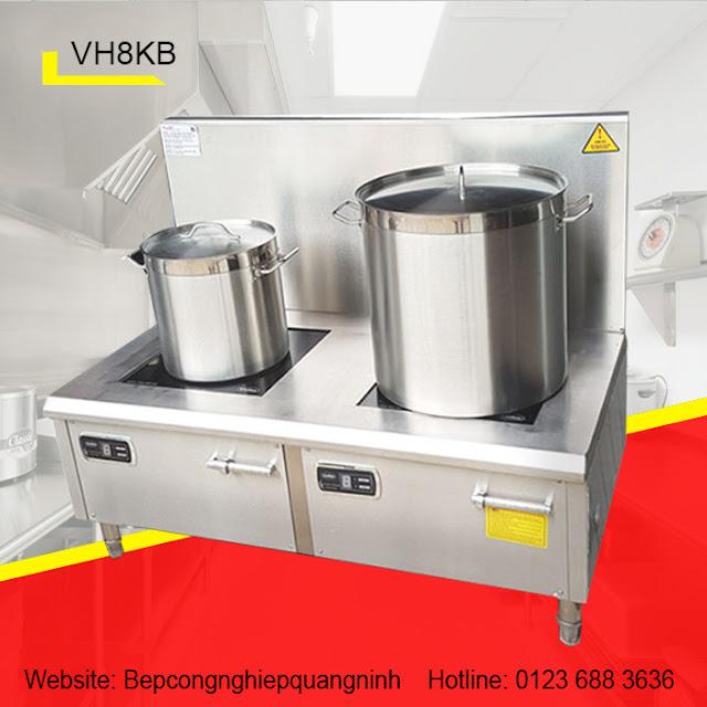 Bếp từ công nghiệp đôi VH8KB
