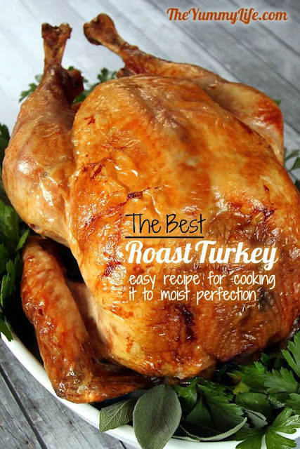 The 15 Absolute Best Thanksgiving Turkey Recipes (juicy, tasty & easy to make!)