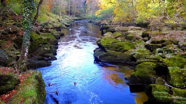 Bolton Strid, Beautiful River Can 'Human Swallow' | Daily Unique