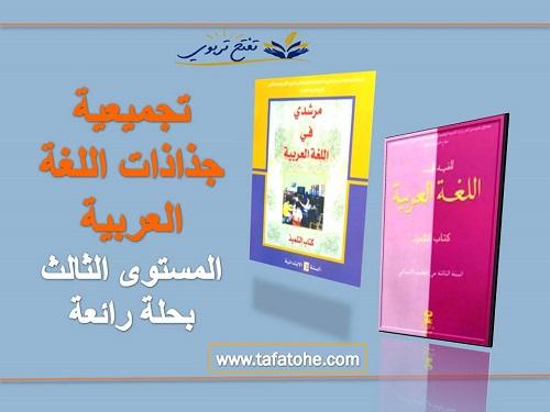 تجميعية جذاذات اللغة العربية المستوى الثالث بحلة رائعة