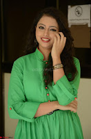 Geethanjali in Green Dress at Mixture Potlam Movie Pressmeet March 2017 069.JPG