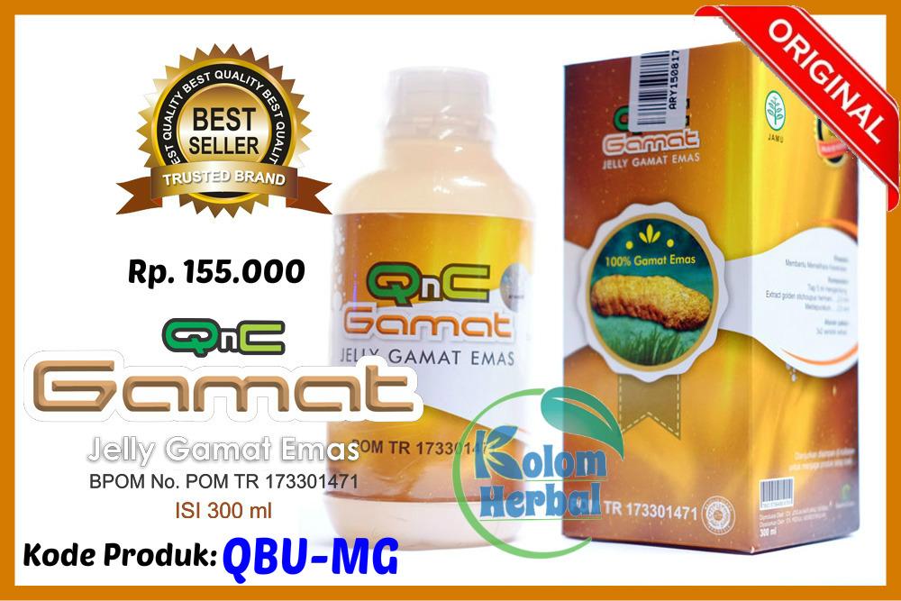 Obat Herbal Penyakit Tumor Lambung