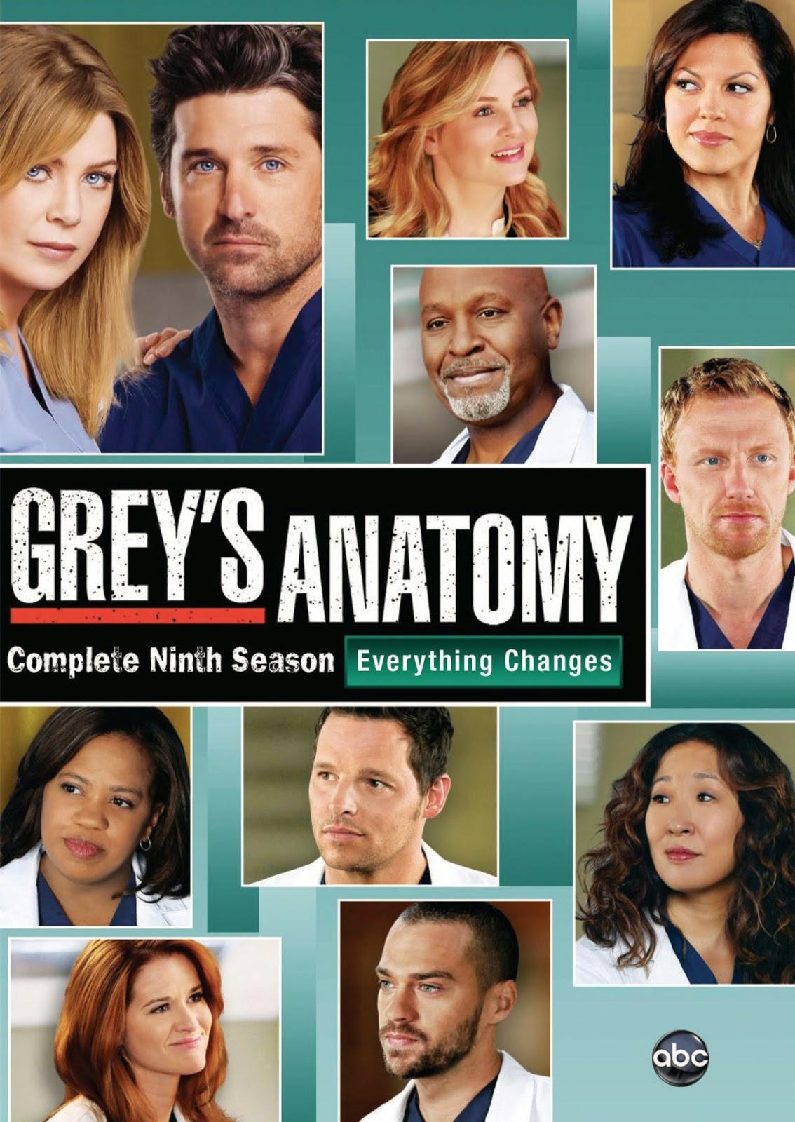 Assistir Greys Anatomy 9 Temporada Dublado E Legendado Online Vestdmc